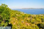 Steni Vala | Alonissos Sporaden | De Griekse Gids foto 3 - Foto van De Griekse Gids