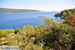 Agios Petros bij Steni Vala | Alonissos Sporaden | De Griekse Gids foto 12 - Foto van De Griekse Gids