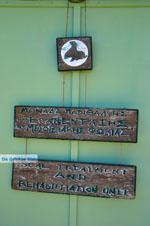 MOM, bescherming Monachus-Monachus zeehonden Alonissos | Sporaden foto 9 - Foto van De Griekse Gids