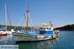 Steni Vala | Alonissos Sporaden | De Griekse Gids foto 18 - Foto van De Griekse Gids