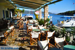 Steni Vala | Alonissos Sporaden | De Griekse Gids foto 29 - Foto van De Griekse Gids