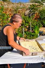 Steni Vala | Alonissos Sporaden | De Griekse Gids foto 32 - Foto van De Griekse Gids
