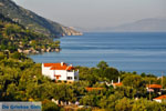 Agios Dimitrios | Alonissos Sporaden | De Griekse Gids foto 4 - Foto van De Griekse Gids