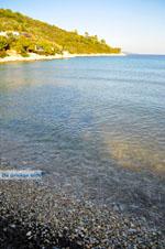 Tzortzi | Alonissos Sporaden | De Griekse Gids foto 9 - Foto van De Griekse Gids
