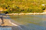Tzortzi | Alonissos Sporaden | De Griekse Gids foto 10 - Foto van De Griekse Gids