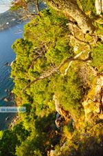 Uitzicht vanaf Agioi Anargiri klooster | Alonissos Sporaden | De Griekse Gids foto 4 - Foto van De Griekse Gids
