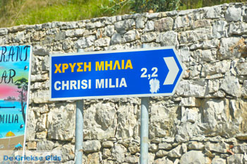 Chrisi Milia | Alonissos Sporaden | De Griekse Gids foto 1 - Foto van De Griekse Gids