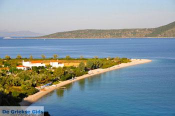 Agios Dimitrios | Alonissos Sporaden | De Griekse Gids foto 9 - Foto van De Griekse Gids