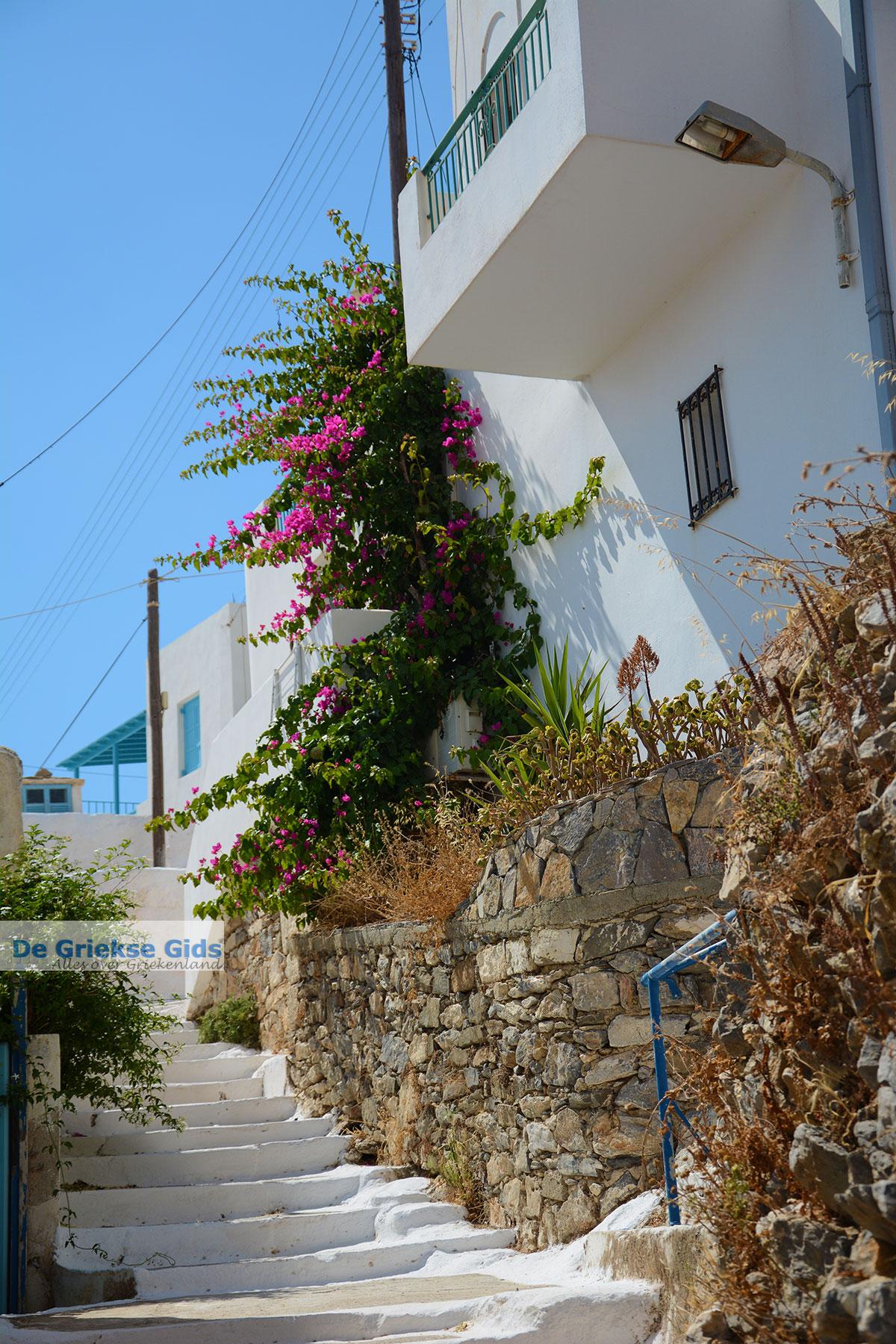 foto Tholaria Amorgos - Eiland Amorgos - Cycladen Griekenland foto 285