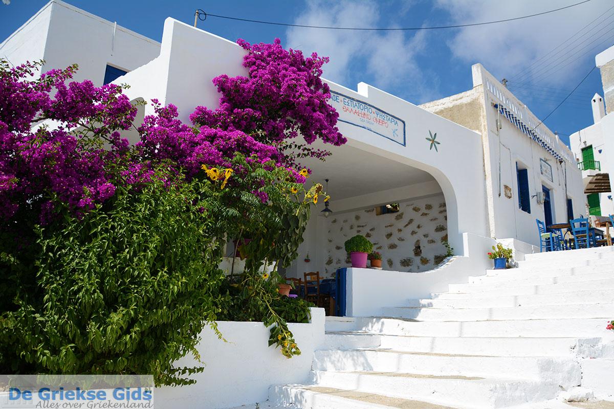foto Tholaria Amorgos - Eiland Amorgos - Cycladen Griekenland foto 289