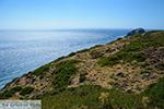 Aghia Anna Amorgos - Eiland Amorgos - Cycladen foto 130 - Foto van De Griekse Gids