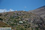 Molens Amorgos stad (Chora) - Eiland Amorgos - Cycladen foto 200 - Foto van De Griekse Gids