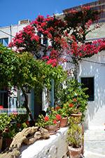 Amorgos stad (Chora) - Eiland Amorgos - Cycladen foto 215 - Foto van De Griekse Gids