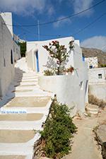 Tholaria Amorgos - Eiland Amorgos - Cycladen Griekenland foto 283 - Foto van De Griekse Gids