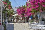 Bougainville in Chora op Antiparos 47 - Foto van De Griekse Gids
