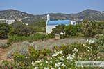 Soros beach op Antiparos 8 - Foto van De Griekse Gids