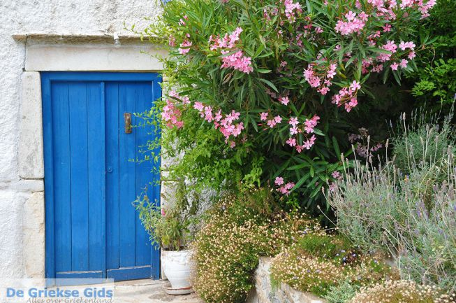 Potamia Naxos