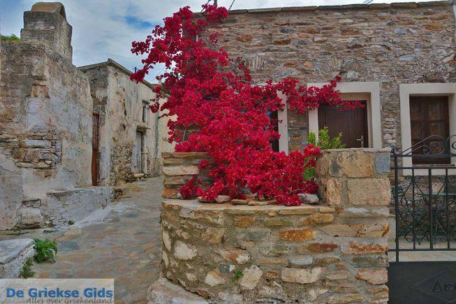 Sangri Naxos/></noscript></p>  <p>Velen noemen Sangri 'het kleine Mystras' vanwege de vele Byzantijnse kerken. In het dorp bevindt zich het klooster van Agios Eleftherios waar zich tegenwoordig het volkenkundig museum bevindt. In het dorp worden sinds het jaar 2001 in de zomer, allerlei festiviteiten, tentoonstellingen en culturele activiteiten gehouden.</p>  <p>Mooie stranden nabij Sagri zijn <a href=