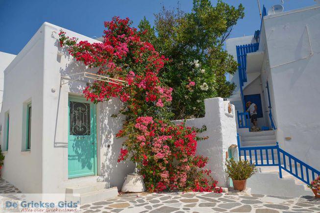 Parikia Paros straatje met bloemen