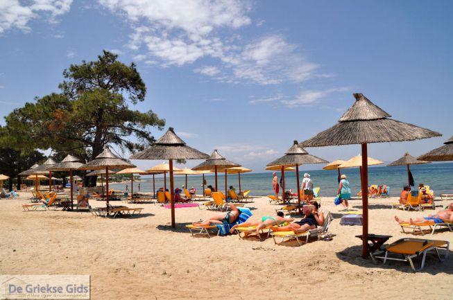 Skala Rachonis beach Thassos