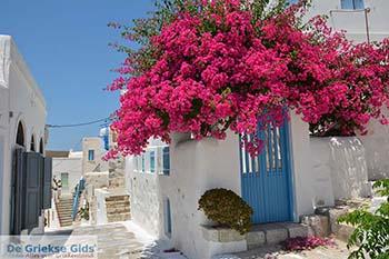 Chora Astypalaia (Astypalea) - Dodecanese -  Foto 99 - Foto van De Griekse Gids