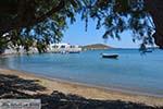 Maltezana - Analipsi Astypalaia (Astypalea) - Dodecanese -  Foto 20 - Foto van De Griekse Gids