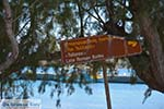 Maltezana - Analipsi Astypalaia (Astypalea) - Dodecanese -  Foto 21 - Foto van De Griekse Gids