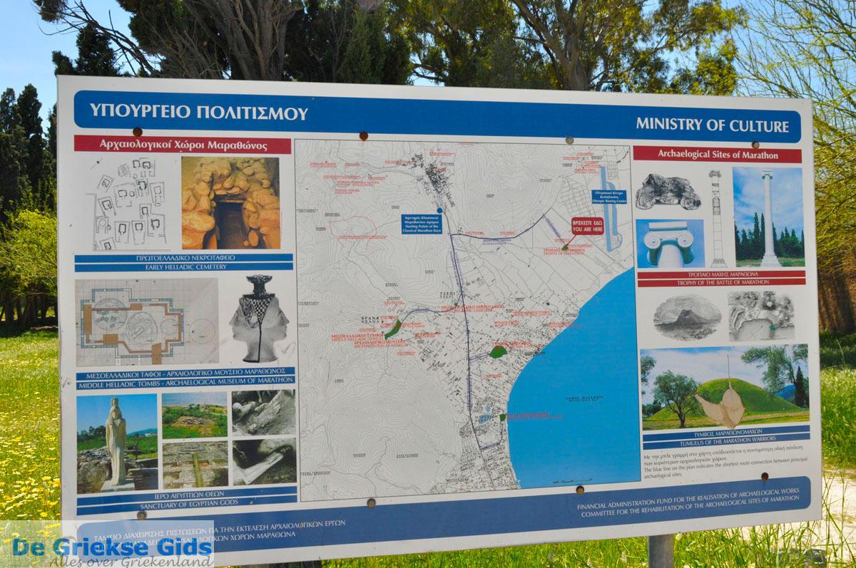 foto Marathon | Attica - Atheense Riviera | De Griekse Gids foto 1