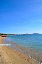 Nea Makri bij Athene | Attica - Atheense Riviera | De Griekse Gids foto 3 - Foto van De Griekse Gids