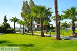 Hotel Golden Coast Nea Makri | Attica - Atheense Riviera | De Griekse Gids foto 2 - Foto van De Griekse Gids