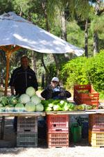 Groenteboer Nea Makri | Attica - Atheense Riviera | De Griekse Gids foto 2 - Foto van De Griekse Gids