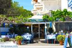 Nea Makri bij Athene | Attica - Atheense Riviera | De Griekse Gids foto 14 - Foto van De Griekse Gids