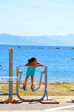 Nea Makri bij Athene | Attica - Atheense Riviera | De Griekse Gids foto 16 - Foto van De Griekse Gids