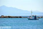 Nea Makri bij Athene | Attica - Atheense Riviera | De Griekse Gids foto 17 - Foto van De Griekse Gids