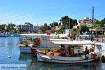 Nea Makri bij Athene | Attica - Atheense Riviera | De Griekse Gids foto 19 - Foto van De Griekse Gids