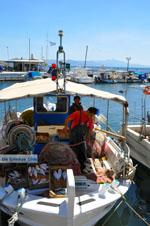 Nea Makri bij Athene | Attica - Atheense Riviera | De Griekse Gids foto 21 - Foto van De Griekse Gids