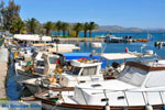 Nea Makri bij Athene | Attica - Atheense Riviera | De Griekse Gids foto 24 - Foto van De Griekse Gids