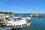 Nea Makri bij Athene | Attica - Atheense Riviera | De Griekse Gids foto 25 - Foto van De Griekse Gids