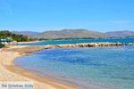 Nea Makri bij Athene | Attica - Atheense Riviera | De Griekse Gids foto 28 - Foto van De Griekse Gids