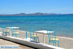 Nea Makri bij Athene | Attica - Atheense Riviera | De Griekse Gids foto 29 - Foto van De Griekse Gids