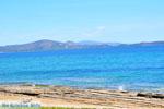 Nea Makri bij Athene | Attica - Atheense Riviera | De Griekse Gids foto 32 - Foto van De Griekse Gids