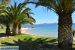 Nea Makri bij Athene | Attica - Atheense Riviera | De Griekse Gids foto 34 - Foto van De Griekse Gids