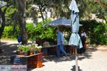Nea Makri bij Athene | Attica - Atheense Riviera | De Griekse Gids foto 35 - Foto van De Griekse Gids