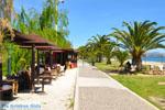 Nea Makri bij Athene | Attica - Atheense Riviera | De Griekse Gids foto 37 - Foto van De Griekse Gids