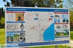Marathon | Attica - Atheense Riviera | De Griekse Gids foto 1 - Foto van De Griekse Gids