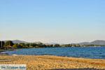 Strand Nea Makri | Attica - Atheense Riviera | De Griekse Gids foto 1 - Foto van De Griekse Gids