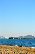 Strand Nea Makri | Attica - Atheense Riviera | De Griekse Gids foto 2 - Foto van De Griekse Gids