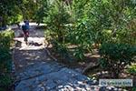 Nationale Tuin Athene 001 - Foto van De Griekse Gids