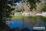 Nationale Tuin Athene 002 - Foto van De Griekse Gids