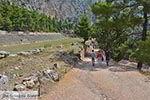 Delphi Fokida - Centraal Griekenland foto 4 - Foto van De Griekse Gids